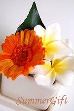 プルメリア&ガーベラのミニアレンジ。夏らしい元気な色合いです。 Floral, Flowers, Plants, Gifts, Presents, Plant, Favors, Royal Icing Flowers, Flower