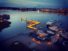 Golden Zed. #victoria #harbour #victoriabc #dock #marina #view #beatourist #yachts #boats #nautical