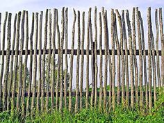 8 Productive Tips: Wooden Fence Miami Garden Fence 6 Foot.Wooden Fence Nailer Fencing Ideas For Homes. Backyard Fences, Garden Fencing, Garden Art, Garden Design, Pool Fence, Bamboo Fencing, Fence Landscaping, Fence Design, Front Yard Fence