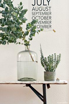 Urban Jungle Bloggers: Plants & Flowers by @stylingfieber