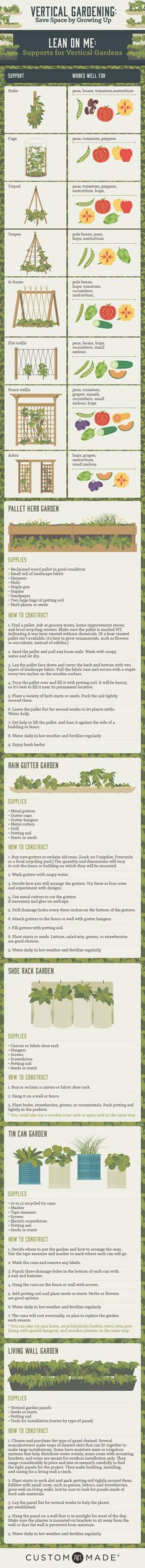 Vertical Gardening- Save Space by Growing Up [INFO-GRAPHIC]