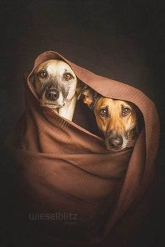 Photography by: Elke Vogelsang