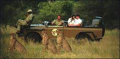 KrugerTV Game Lodge, Best Games, Lodges, Safari, Monster Trucks, Africa, Cottages, Afro
