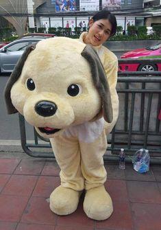 Animal Costumes, Mascot Costumes, Teddy Bear, Cosplay, Animals, Character, Apple, Girls, Costumes