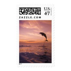 Jumping Bottlenose Dolphin Postage
