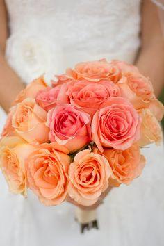 Orangeish Pink Roses