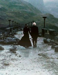 Narzissa and Draco both of them saved Harry one time
