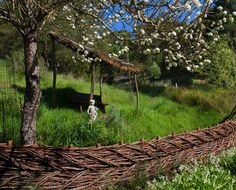 Decorative willow fence weaving