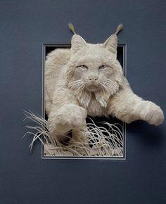 Paper Sculpture by Calvin Nicholls -