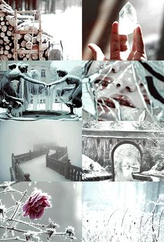 1000 Picspams Challenge   #83 Fairytale Aesthetics   The Snow Queen by Hans Christian Andersen  snow-flakes are quite perfect till they begin to melt