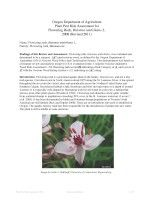 Plant pest risk assessment for flowering rush, Butomus umbellatus L. by Oregon Department of Agriculture