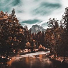 🍂🐻 ••• Follow me on my personal account @ivanmosetti @damianodinuzzo ••• 📍: #Yosemite #USA 📷 by: @jude_allen ••• Tag your photo with hashtag #ivanmosetti the most beautiful will be repost in this page Follow @ivanmosetti.travel for see how much it's beautiful the us earth Leggi il mio blog e le mie esperienze www.ivanmosetti.com (link in bio) ••• #viaggi #avventure #italia #blogitalia #vacanze #amici #luoghistraordinari #avventura #mondo #pianeta #foto #fotografia #estate #inverno…