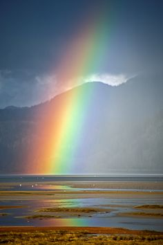 ~~Full Skies ~ Amazing rainbow by the bay ~ aka Roy G Biv = Red, Orange, Yellow, Green, Blue, Indigo and Violet by Bobshots~~