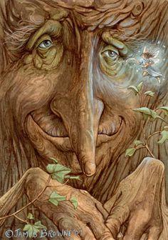 tree elf and fairy Illustration Inspiration, Illustration Art, Vintage Illustrations, Fantasy Kunst, Fantasy Art, Fantasy Trees, One Photo, Creation Photo, Fairy Art