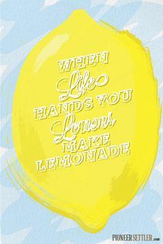 When Life Hands You Lemons, Make Lemonade!