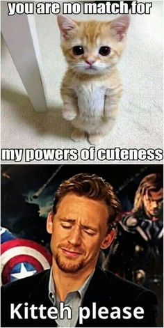 "And real Tom will probably say, ""No, I'm no match for that kitty. She wins"", while smiling. That softy guy."