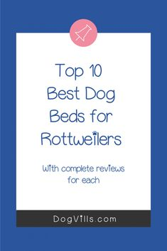 Looking for the best dog beds for rottweilers? We've got you covered! Take a look at our top 10 picks with complete reviews! Silly Dogs, Big Dogs, Cute Dog Collars, Purple Animals, Waterproof Liner, Orthopedic Dog Bed, Cool Dog Beds, Rottweilers, Sleeping Dogs