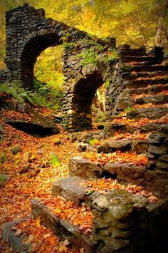 The beauty of fall - rock stairs - - want to see more beautiful art? Visit www.sarahangst.com - Sarah Angst Fine Artist & Printmaker - for bright & bold watercolor block prints - landscapes, animals, flowers...