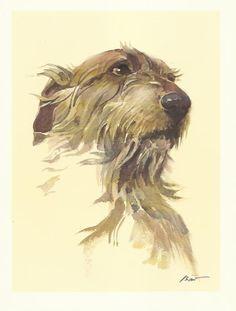 Irish Wolfhound colour print by Willie Bar 1975 dog print
