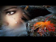 Andrea Berg, Cool Animations, Logo Design, Painting, Mobiles, Autumn, Blog, Photographers, Fall Season