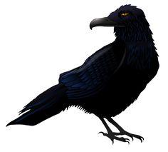 Haunted Raven PNG Vector Clipart