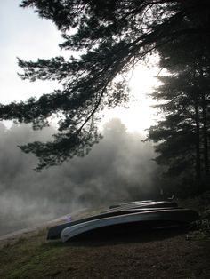 There's nothing that beats a morning paddle in Algonquin Park. Summer Camp Canada, Algonquin Park, True North, Canoes, Weekends Away, Camping And Hiking, Solitude, Erika, Beautiful Landscapes