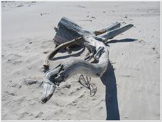 spokojne morze biała plaża krajobraz bałtyk - Google Search