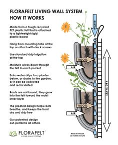 Florafelt vertical garden systems make living walls easy. The best and most affordable green wall system available. Home Greenhouse, Greenhouse Gardening, Hydroponic Gardening, Hydroponics, Vertical Garden Systems, Vertical Garden Design, Vertical Planting, Vertical Farming, Green Facade