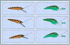 How diving lip and angle and tow point location affect crankbait lure swimming action
