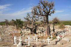 Installé au milieu des baobabs, sur une petite colline, ce cimetière est un cimetière mixte chrétien et musulman. Autre particularité de ce village, le village même de Fadiouth est construit sur un amoncellement de coquillages.  Joal-Fadiouth - Sénégal