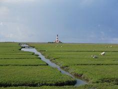 Eine wahrhaft schöne Aussicht an der Nordsee. Grün über Grün wohin man auch schaut. German Girls, North Sea, Lighthouses, All Over The World, Strand, Beautiful Places, To Go, Wanderlust, Country Roads