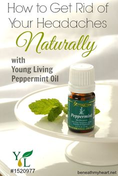 Young Living Essential Oils peppermint oil