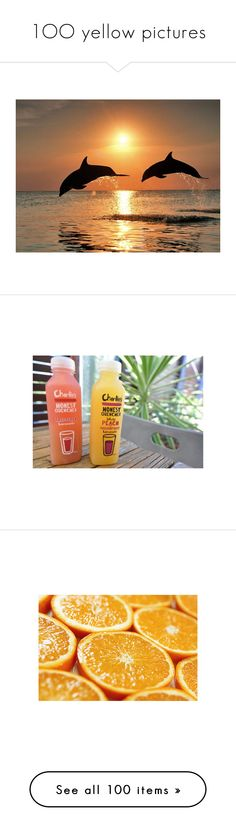 """""""1OO yellow pictures"""" by xoxo-may ❤ liked on Polyvore featuring pictures, orange, animals, orange pictures, backgrounds, photos, summer, food, icons and wallpaper"""