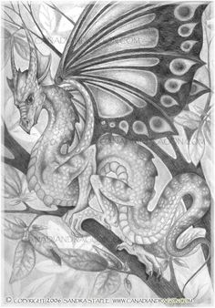 Nice drawing not sure about the wings but amazing detail!
