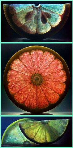 Citrus Series by Dennis Wotjkiewicz. Photorealistic fruit paintings Dennis Wojtkiewicz took his still-life paintings to another level when he decided to work with fruit. Attracted to the inside of pieces of everyday fruit—the seeds, veins, and the translucent flesh and color changes—Dennis renders them in large-scale using oil on canvas. Photorealism