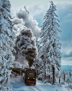 "126.3k Likes, 546 Comments - 🌎 Earthpix 🌎 (@earthpix) on Instagram: ""Steam train in the Harz Mountains 🚂 Photo by @steffimarla"""