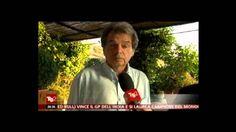Renato Brunetta al Tg2 - 27/10/2013