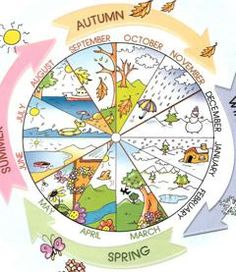 Englisch in der Grundschule: months and seasons Kids English, English Words, English Lessons, Learn English, English Language, Seasons Of The Year, Months In A Year, Four Seasons, Year 2