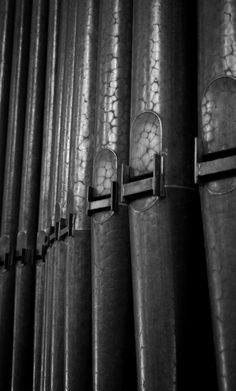 + (organ pipes)