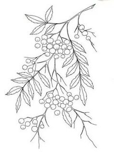 Draw Flower Patterns Embroidery pattern flower drawings image only link broken unknown source jwt – Artofit Floral Embroidery Patterns, Silk Ribbon Embroidery, Hand Embroidery Designs, Embroidery Art, Embroidered Flowers, Embroidery Stitches, Quilt Patterns, Flower Drawing Images, Floral Drawing