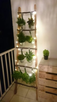 Diy balcony herbs ladder fairy lights balcony herb leddar balcony balcony diy balkon decoratie how to make a better strawberry pallet planter Small Balcony Decor, Small Balcony Garden, Balcony Plants, Indoor Garden, Outdoor Gardens, Balcony Ideas, Balcony Herb Gardens, Small Balconies, Outdoor Balcony