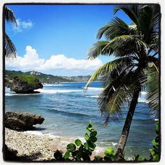 Top Things To Do In Barbados Barbados Beaches Paradise - 10 things to see and do in barbados
