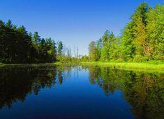 Canoeing. Blue Trail, Otter River, Gardner, MA