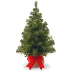 a5e609e122d1 National Tree 2 Foot Noble Spruce Tree with Burlap Bag > Startling big  discounts available here : Christmas Trees