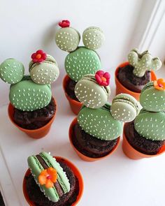The most hallucinating macaroons - Cupcake - Macarons Cute Desserts, Delicious Desserts, Dessert Recipes, Yummy Food, Macaroon Recipes, Macaroon Cake, Cactus Cupcakes, Cactus Cake, Succulent Cupcakes