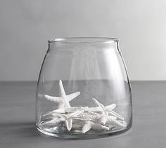 Mini White Starfish Vase Filler | Pottery Barn