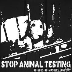 frente liberacion animal - Buscar con Google