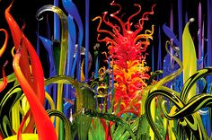 """With the Mille Fiori – Italian for """"a thousand flowers,"""" – Chihuly assembles gardens of glass that include many of his series of works. He exhibited the first Mille Fiori in his hometown in 2003 at the Tacoma Art Museum. The artist's association with gardens is strongly autobiographical and references his mother's passion for gardening."""