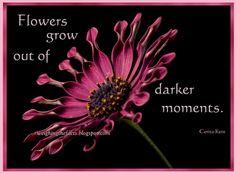 "Flowers grow out of darker moments."" Corita Kent"