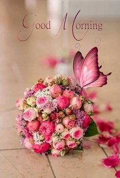 Great Pictures Pink Flowers good morning Popular If you're looking for flowers with a stunning hue and lively feeling, try Good Morning Msg, Good Morning Tuesday, Good Morning Cards, Funny Good Morning Quotes, Good Morning Inspirational Quotes, Good Morning Coffee, Morning Greetings Quotes, Good Morning Picture, Good Morning Messages